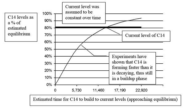 Figure 4. A buildup curve contrasted with the assumed constant level. The curved line going up from 0% represents a rough estimate of the C14 levels in the atmosphere over the past 12,000 years or so. It is based on the 30,000 years Libby suggested was needed for C14 to build to a level close to equilibrium. The bold horizontal line represents the popular assumption that levels have remained constant over at least the past 12,000 years and are expected to remain the same in the future. Since current levels are about 80% of the equilibrium as calculated from the difference between the formation and decay rates, the line is drawn at 80% rather than the 100% used in figures 1 and 2.