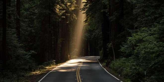 What the Good Samaritan Teaches Us About Crossing Roads