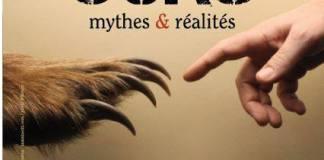 plus-que-qutre-mois-pour-profiter-de-lexpo-ours-mythes-et-realite-a-eyne
