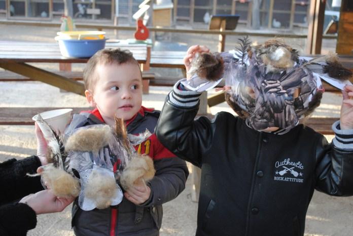 la-ferme-de-decouverte-de-saint-andre-propose-un-atelier-viens-decorer-ton-masque-de-carnaval-pour-les-enfants