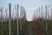 la-vallee-de-lagly-se-mobilise-pour-ses-agriculteurs-2
