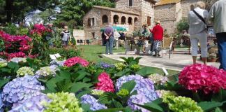 torreilles-xemes-floralies-de-juhegues