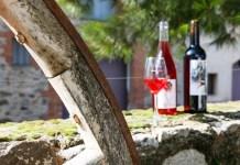 du-terroir-a-lhistoire-journee-decouverte-vini-patrimoniale-dans-le-fenouilledes