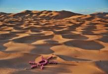 trophee-roses-des-sables-symbole-fort-dans-les-dunes-de-merzouga-pour-le-cancer-du-sein