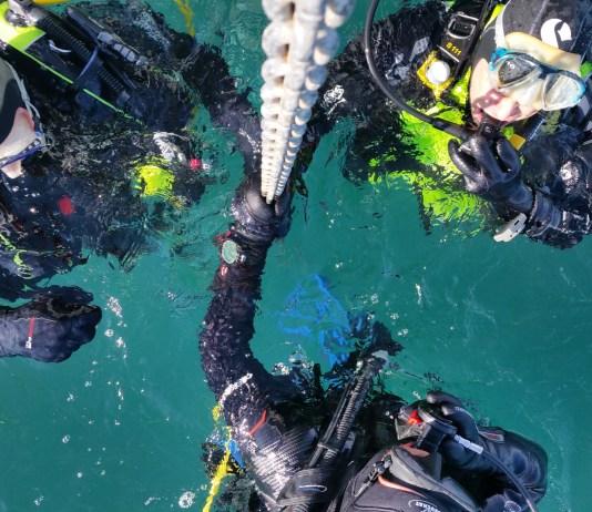 creation-dun-nouveau-club-associatif-de-plongee-dans-le-sud-du-departement-nautile-plongee-66