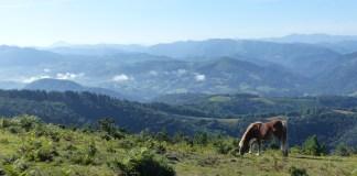 lobservatoire-pyreneen-du-changement-climatique-organise-une-journee-sur-limpact-du-rechauffement-climatique-sur-les-pyrenees
