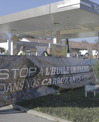 stop-a-lhuile-de-palme-dans-nos-carburants