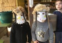 latelier-de-saison-a-la-ferme-de-decouverte-de-saint-andre-viens-decorer-ton-masque-de-carnaval