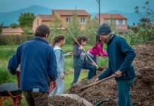 Aux arbres citoyens ! Les citoyens mobilisés pour la journée de la Terre ce 22 avril