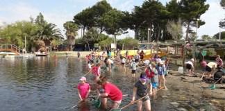 A la découverte de l'étang de Salses-Leucate avec l'Association Le Lac Marin