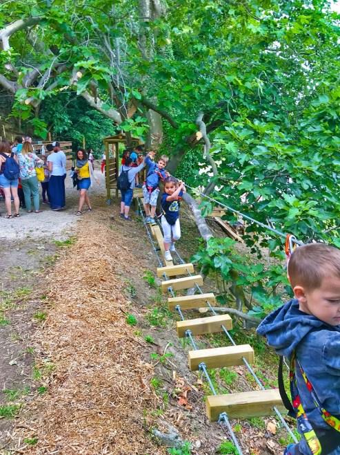 Plus de 800 participants à la 11ème journée « faites du sport » au Soler