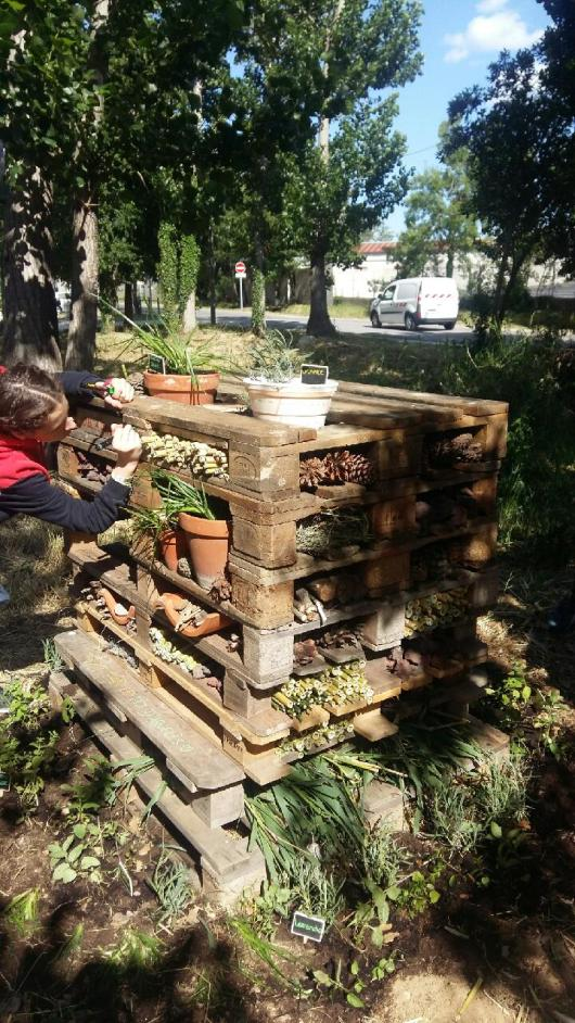 Un hôtel cinq étoiles pour les insectes à Argelès-sur-Mer !