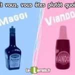 Maggi VS Viandox