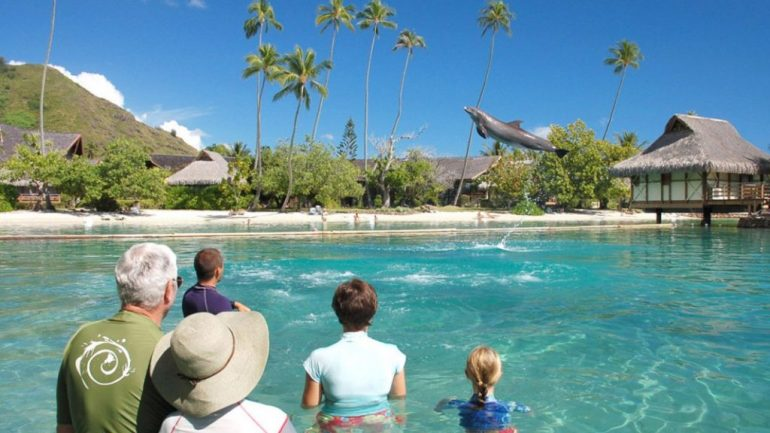 Moorea Dolphin Center