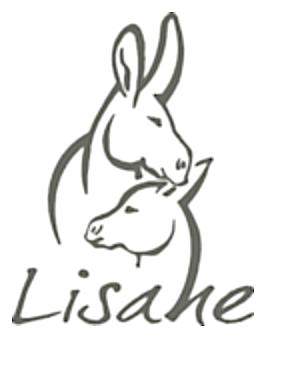 Lisane Le Pré en ville