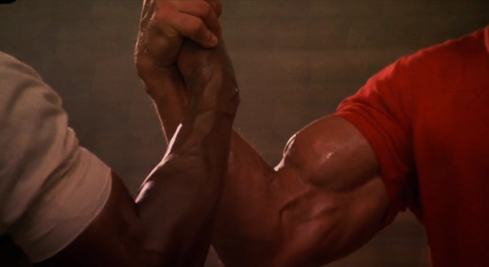 muscles-schwarzenegger