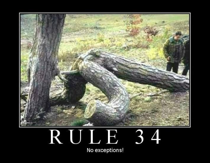 rule34-tree