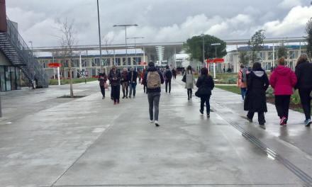 Fusion des universités : la grève reprend lundi 20 janvier