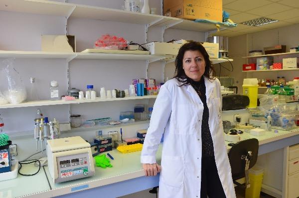 Les premières recherches sur le lymphoedème lancées à l'INSERM de Toulouse