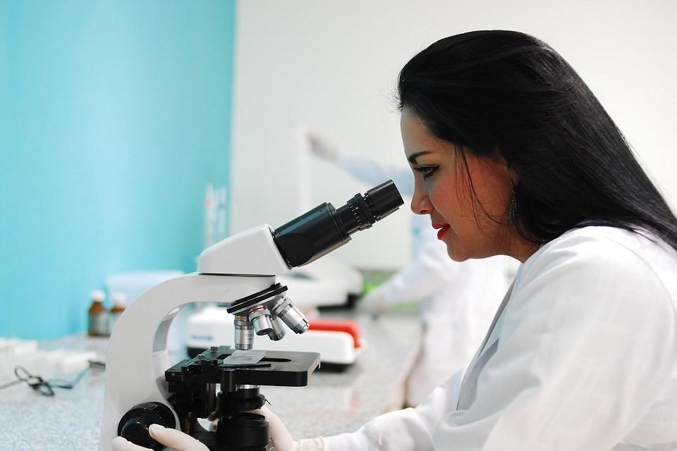 Science : les fruits de la jeunesse