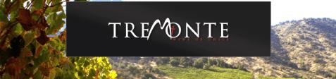 Tremote - Wine of Chile