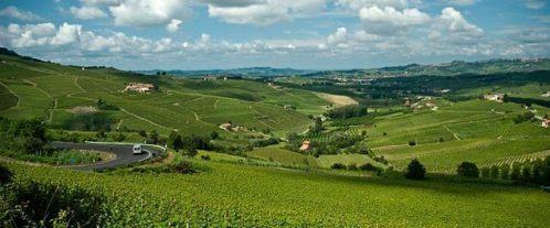 Oberto-Barbera-Piedmont