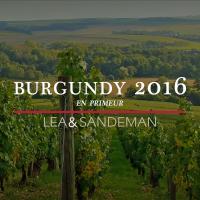 2016-Burgundy-En-Primeur-Money-Week