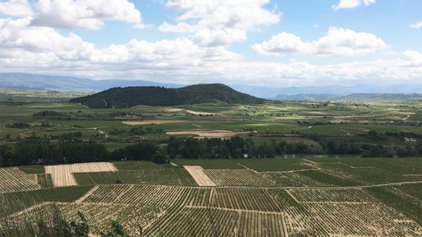 Rioja-visit-lea-sandeman
