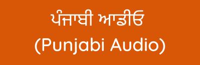 ਪੰਜਾਬੀ ਆਡੀਓ (Punjabi Audio)