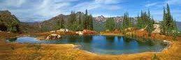 Inspiration by a Mountain Lake