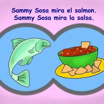 Picture Sammy Sosa Book