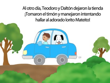 T&D(Spanish)_Gallery19