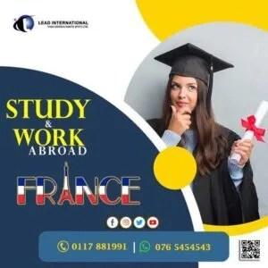 Internships in France Work in France