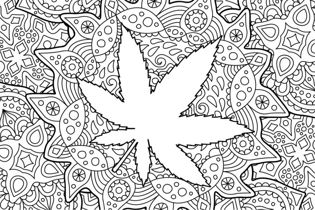 Top 19 Cannabis Coloring Books for the Artistic Stoner  Leafbuyer