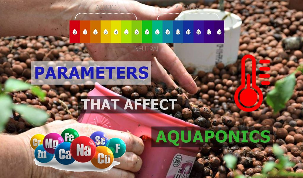 Parameters that affect Aquaponics