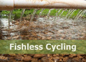 Aquaponics Cycling without fish