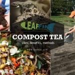 Compost tea guide