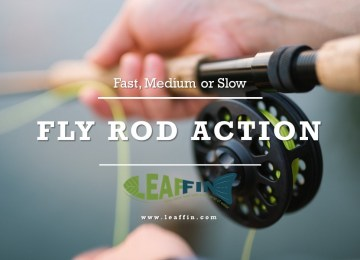fly rod action