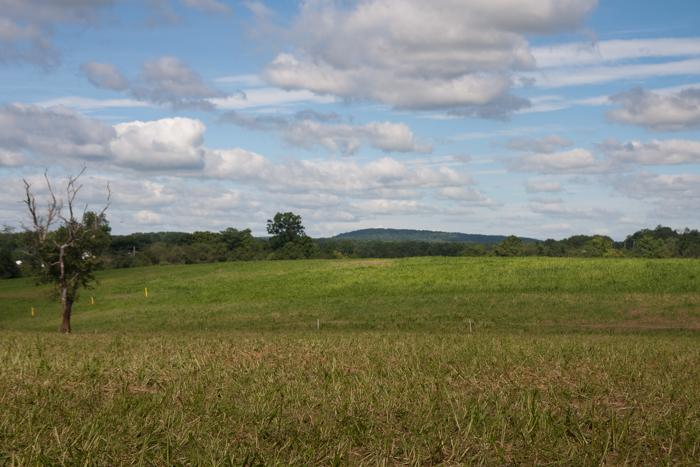 Profeta_Farms-Tour-016-Blog Resized