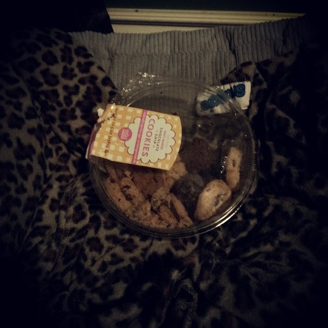 Looks like someone is hoarding cookies for later.  This dog never fails to surprise me with his antics.