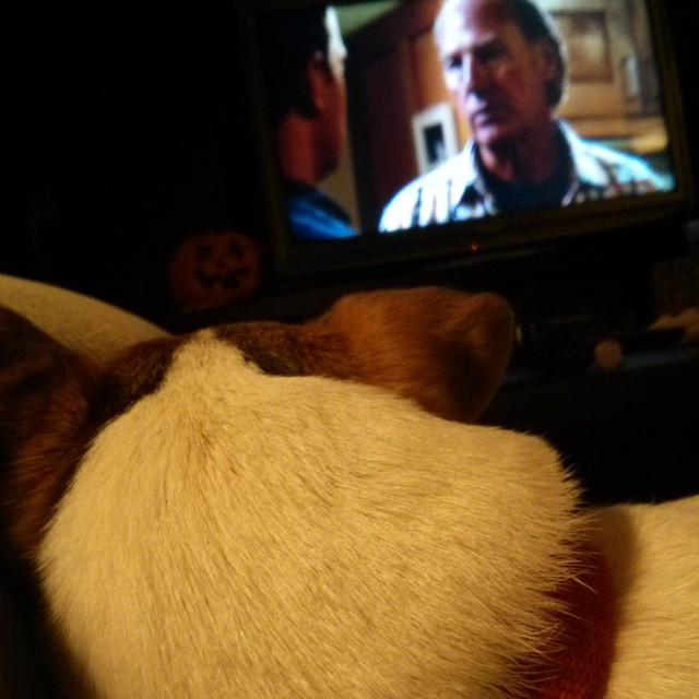 """Even this guy can't resist the emotional trappings of """"Parenthood."""" #familysobbingtogether"""