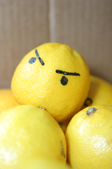 Photo Angry Lemon