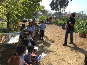 Searching for the Rainbow at Sherman Elementary Garden Club