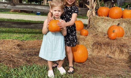 pumpkinpatch4 scaled - Lifestyle Index