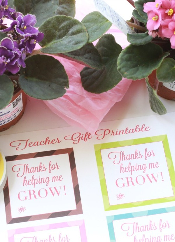 """Thank you for helping me grow"" Free Printable Tags"