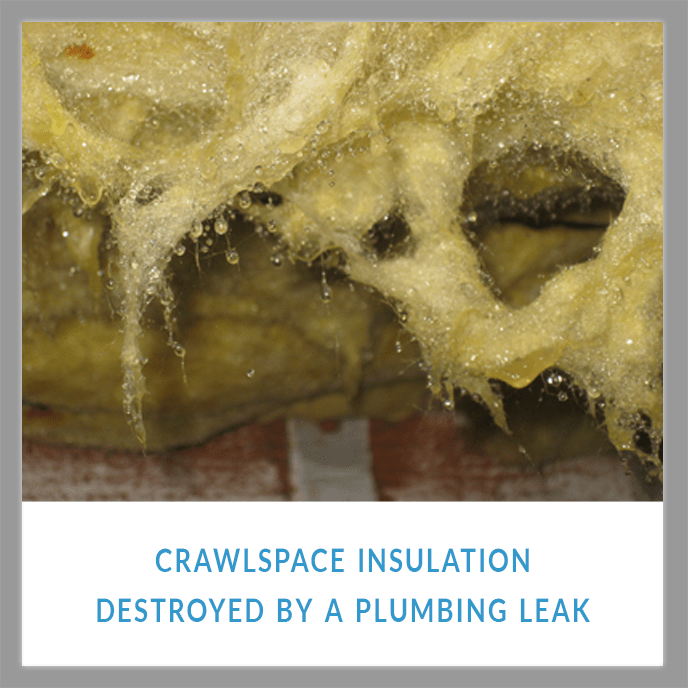 INSULATION CAN BE DESTROYED BY A SEWER AND DRAIN LEAK