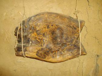 Tablilla de madera que lleva marcas inscritas y que ha sido datada por carbono 14 en el 5260 a.C