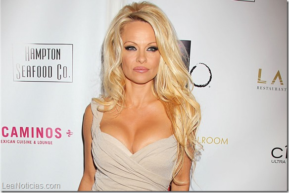 Los 8 escándalos más sonados en la vida de Pamela Anderson