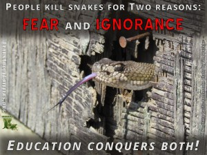 Education Conquers Fear