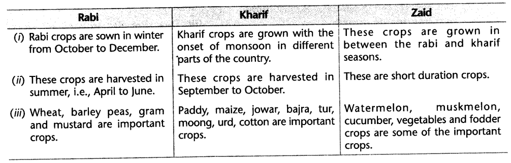 social-sciences-cbse-class-10-geography-agriculture-hots.4